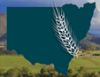 RFCS Northern NSW